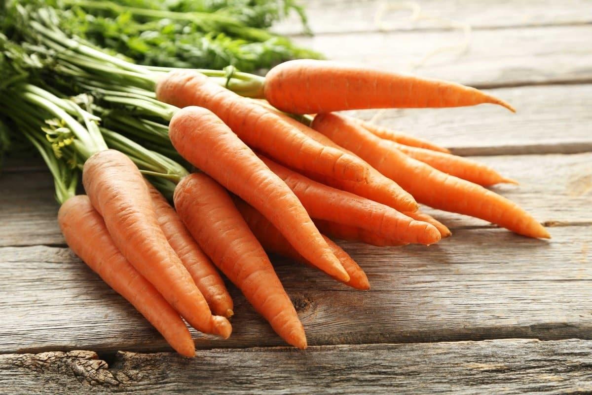 Польза моркови и как ее заготовить
